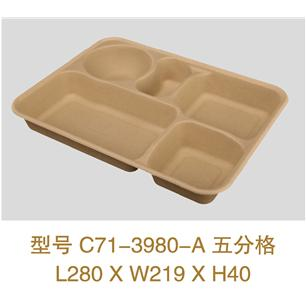 Straw Pulp Plate with Five Bottom Compartments